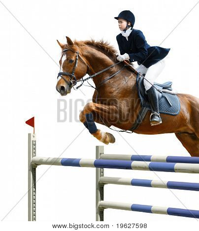 Young girl jumping with sorrel horse - isolated on white