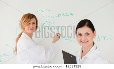 Attractive Scientist Writting A Formula Helped By Her Assistant