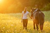 Backview of young woman walking with her horse in evening sunset light. Outdoor photography with fas poster