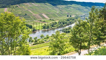View On Moselle Valley And Mosel River In Summer Day, Germany