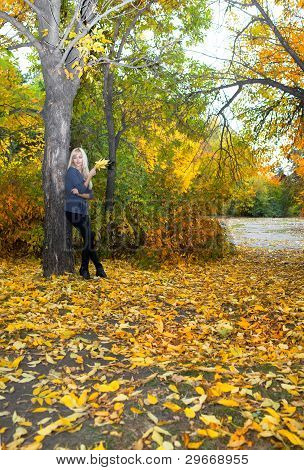 Young Beautiful Woman In Autumn Park