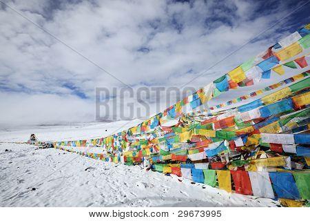 tibet: tibetan prayer flags