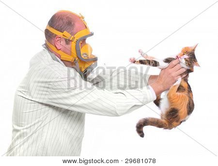 Allergy to animal fur concept. Male scientist in respirator holding test cat.