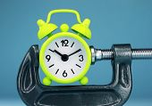 Lime Green Clock Squeeze