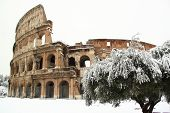 The Coliseum Covered By Snow