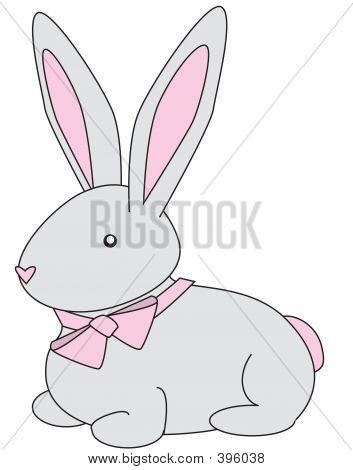 Bunny Gray