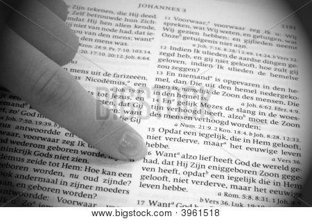 John 3:16 In Dutch