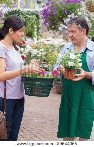 Woman talking to garden center employee holding a basket