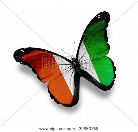 Cote D'ivoire Flag Butterfly, Isolated On White