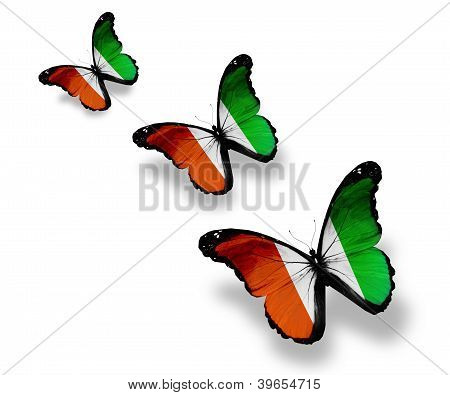 Three Cote D'ivoire Flag Butterflies, Isolated On White