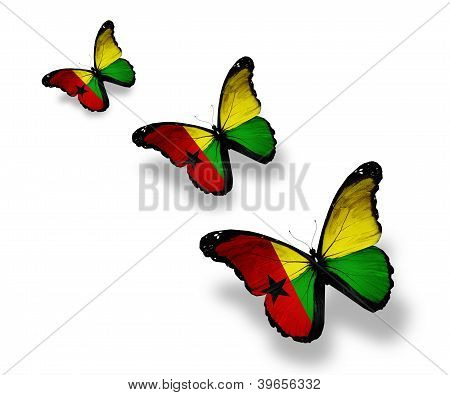 Three Guinea-bissau Flag Butterflies, Isolated On White