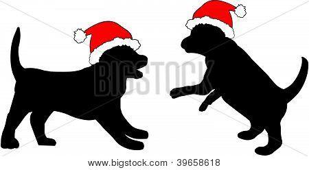 Puppies in Kerstmis hoeden