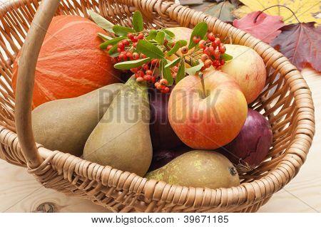 Harvest Festival Basket