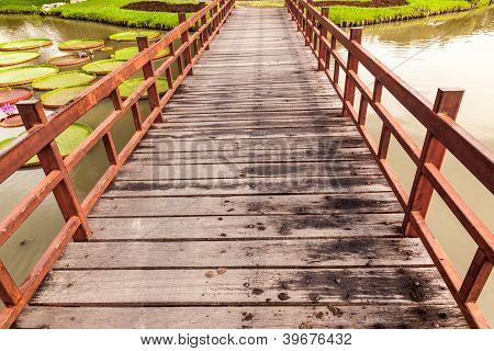 Wooden Bridge Cross Lake