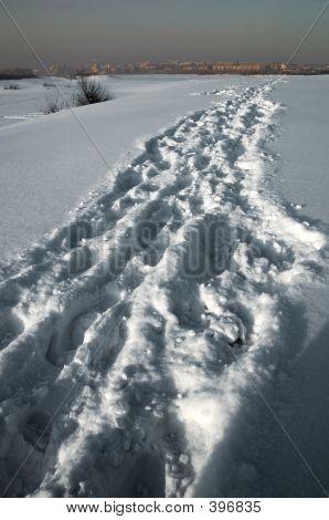 Winter Track.