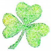 stock photo of triskele  - Green clover on white - JPG
