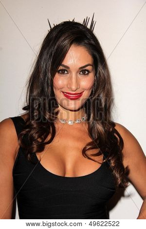 LOS ANGELES - AUG 15:  Nikki Bella at the Superstars for Hope honoring Make-A-Wish at the Beverly Hills Hotel on August 15, 2013 in Beverly Hills, CA