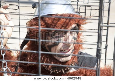 Animal Rights Protester In A Cage