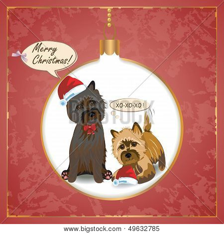 Cairn Christmas Card