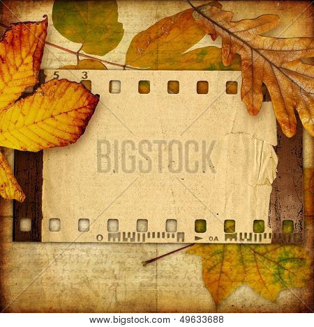 autumn background with film  frame and leaves
