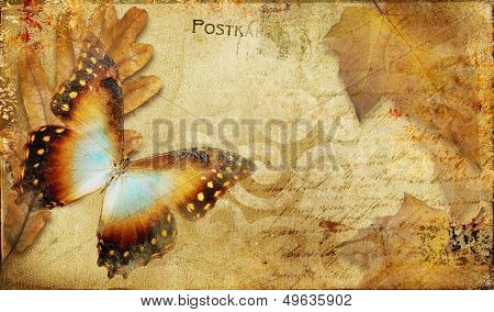 vintage autumn card with leaves and butterfly