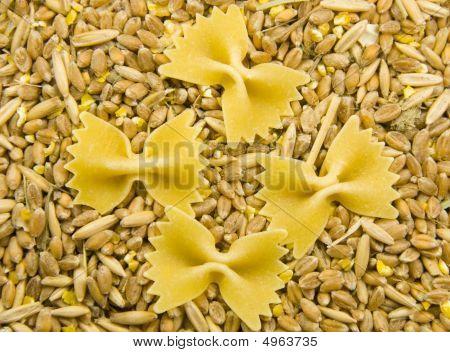 Grain And Noodles