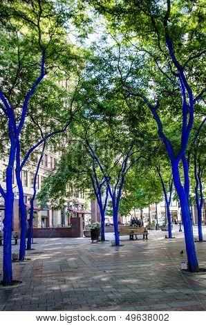Blue trees in Seattle's Westlake Park