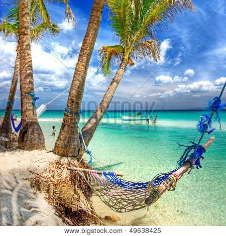tropical scenery with hammock