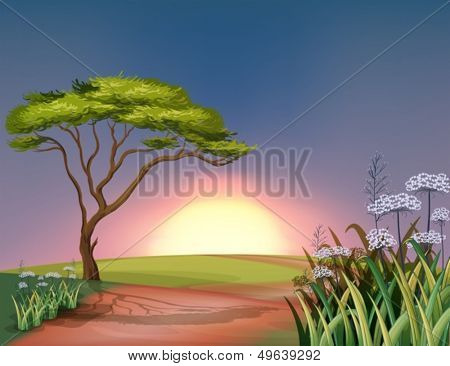 Illustration of a sunset at the hilltop