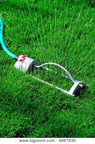 Watering On The Lawn