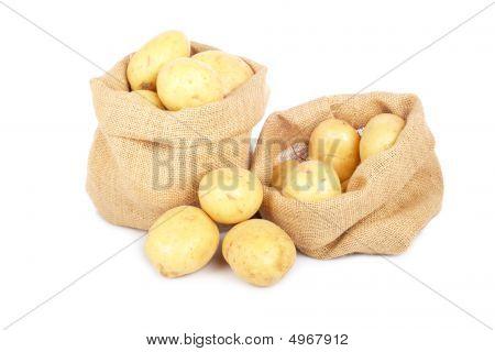 Two Burlap Sacks With Potatoes