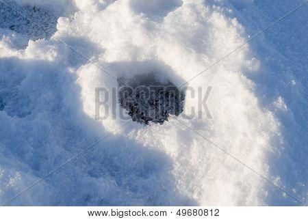 Closeup Frozen Fishing Ice Hole Winter Lake Shadow