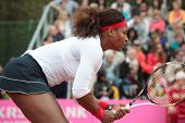 KHARKOV, UKRAINE - APRIL 21: Serena Williams, USA in the match with Elina Svitolina during Fed Cup t