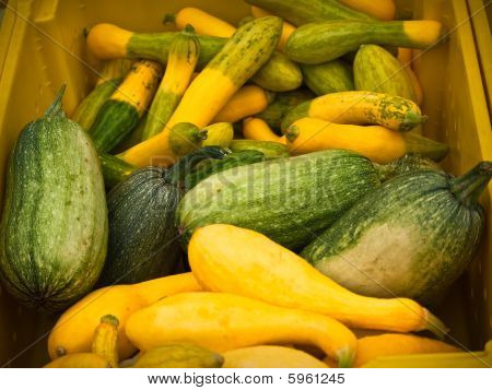 Green And Yellow Market Squash