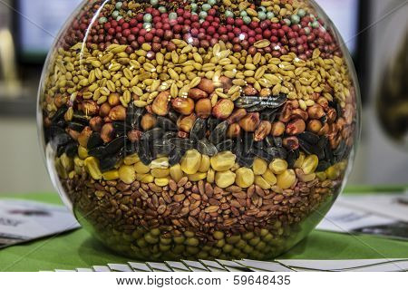 agricultural seeds in the jar