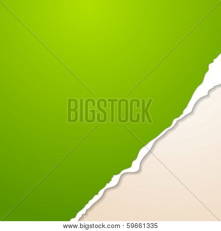 Abstract vector paper background with ragged edge