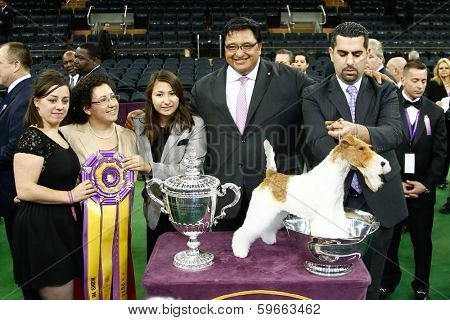 NEW YORK-FEB 11: Sky, a wire fox terrier and handler Gabriel Rangel (2nd R) wins Best in Show at 138th Westminster Kennel Club Dog Show at Madison Square Garden on February 11, 2014  in New York City.