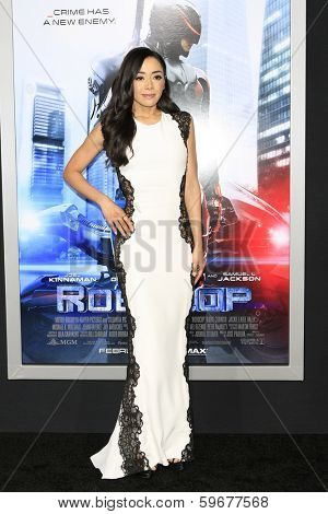 LOS ANGELES - FEB 10: Aimee Garcia at the premiere of Columbia Pictures' 'Robocop' at TCL Chinese Theatre on February 10, 2014 in Los Angeles, California
