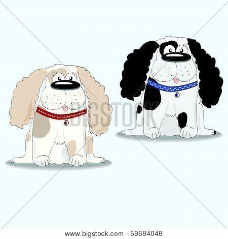 Spaniel dog breed.