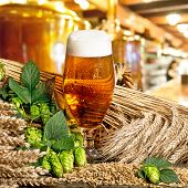 foto of malt  - glass of beer with barley and hop cones - JPG