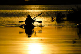 picture of kayak  - Sunset lighting silhouetes of men kayaking in the lake - JPG