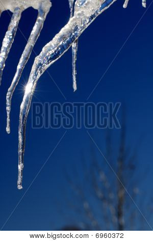 Icicles gleaming in brilliant sunlight against a bright blue shy.