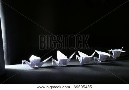 Origami cranes on dark background with light