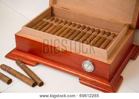 cuban cigar and humidifier