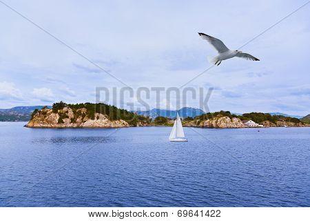 Fjord Lysefjord - Norway