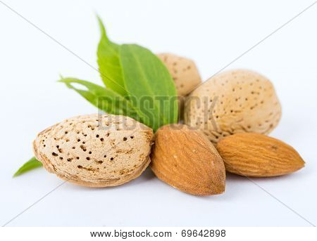 almond nuts with leaves