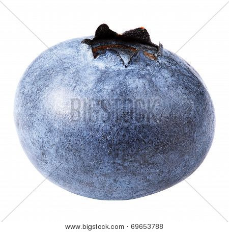 Blueberry Berry Isolated On White