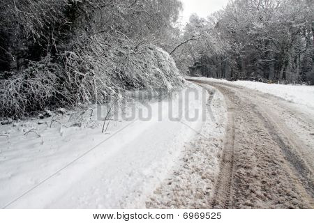 Winter snow and a road going through woods