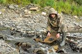 picture of gold panning  - On the banks of the river with the help of geologist tray determines the content of gold in the rock - JPG