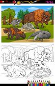 stock photo of wolverine  - Coloring Book or Page Cartoon Illustration of Black and White Funny American Mammals Animals Characters Group for Children - JPG
